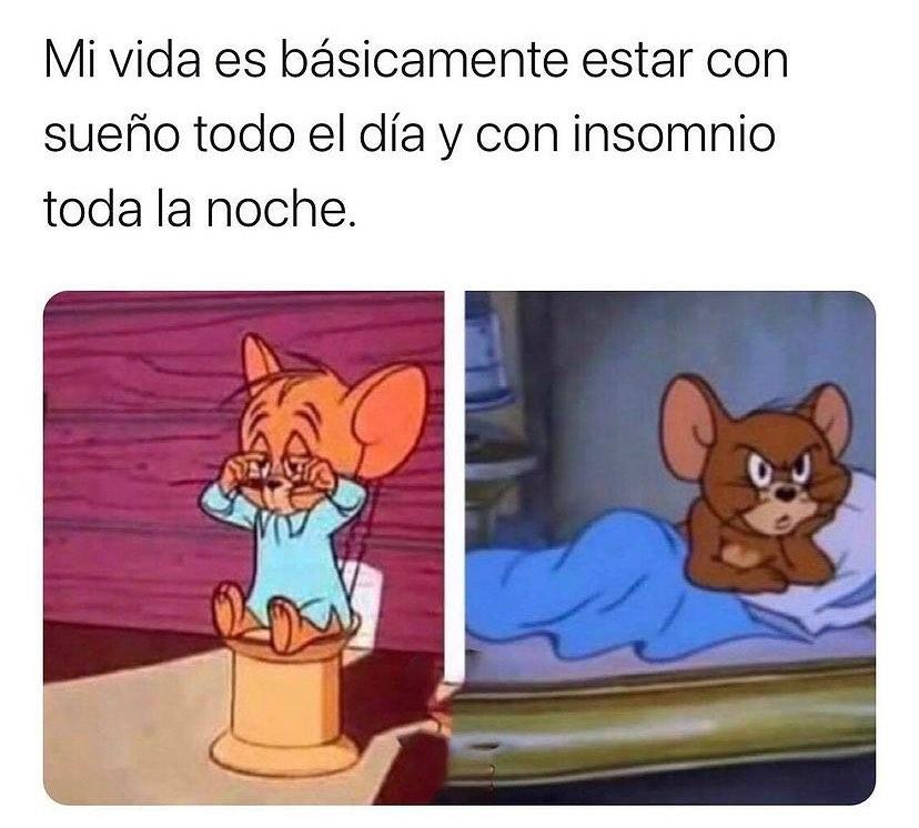 Mi vida es básicamente estar con sueño todo el día y con insomnio toda la noche.