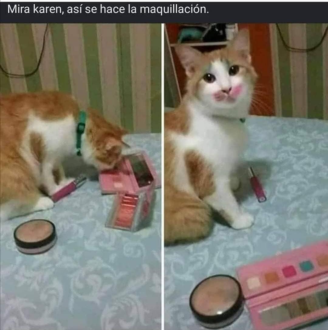 Mira karen, así se hace la maquillación.