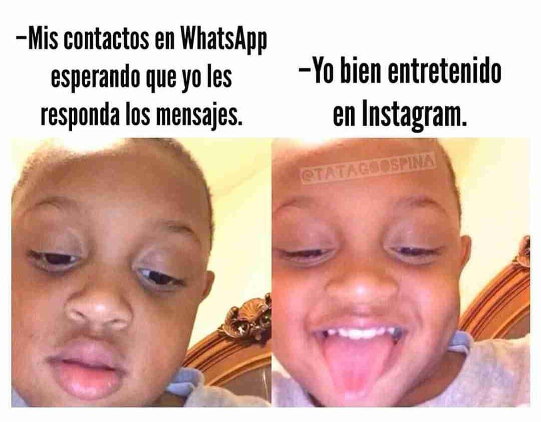 Mis contactos en WhatsApp esperando que yo les responda los mensajes. / Yo bien entretenido en Instagram.