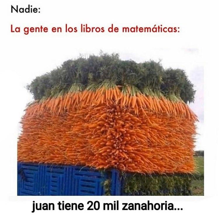 Nadie:  La gente en los libros de matemáticas: Juan tiene 20 mil zanahoria.