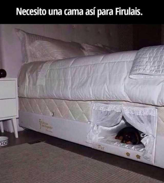 Necesito una cama así para Firulais.