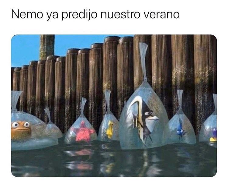 Nemo ya predijo nuestro verano.