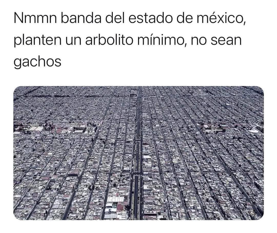 Nmmn banda del estado de México, planten un arbolito mínimo, no sean gachos.