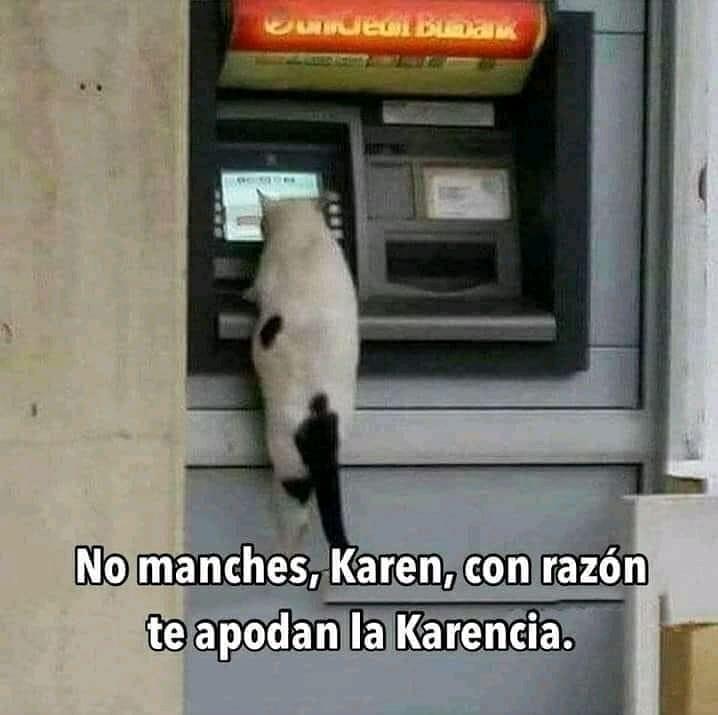 No manches; Karen, con razón apodan la Karencia.