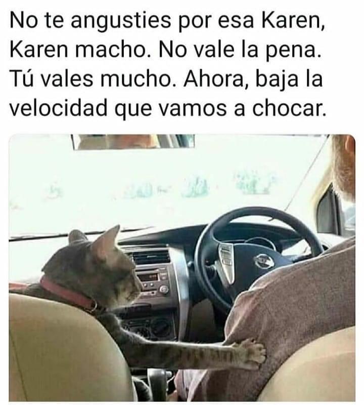No te angusties por esa Karen, Karen macho. No vale la pena. Tú vales mucho. Ahora, baja la velocidad que vamos a chocar.