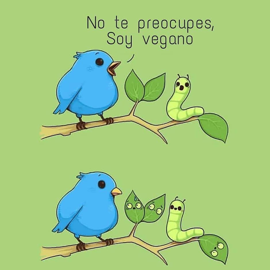 No te preocupes soy vegano.