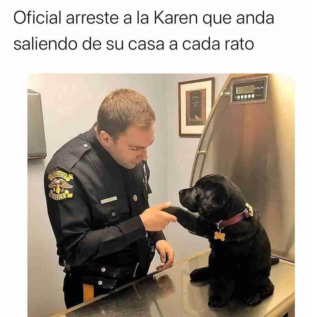 Oficial arreste a la Karen que anda saliendo de su casa a cada rato.