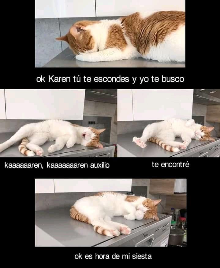 Ok Karen tú te escondes y yo te busco Kaaaaaaren, Kaaaaaaaren auxilio. Te encontré.  Ok es hora de mi siesta.