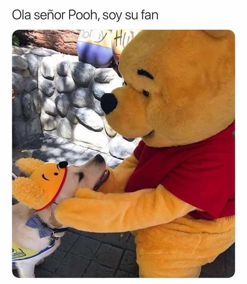 Ola señor Pooh, soy su fan.