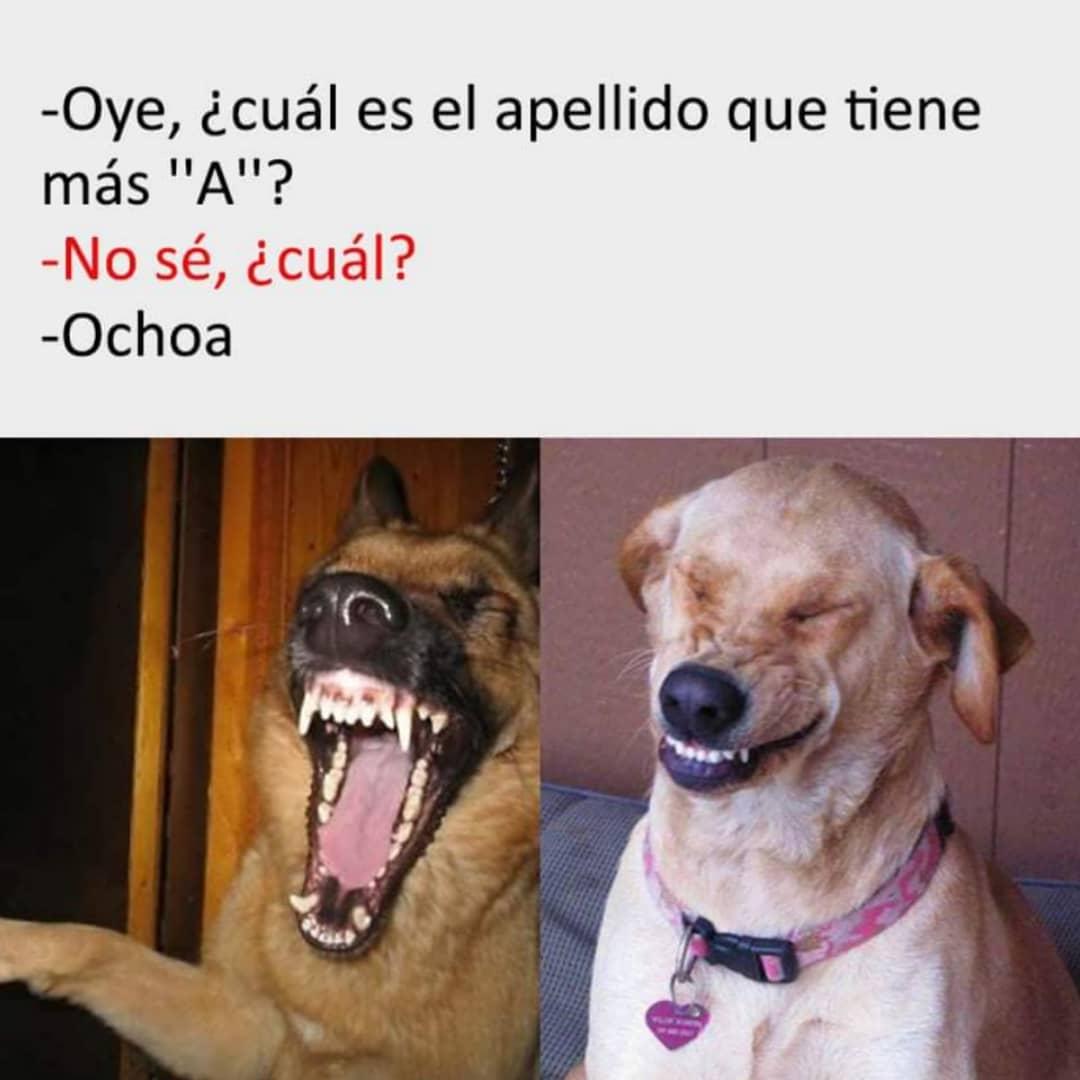 """Oye, ¿cuál es el apellido que tiene más """"A""""?  No sé, ¿cuál?  Ochoa."""