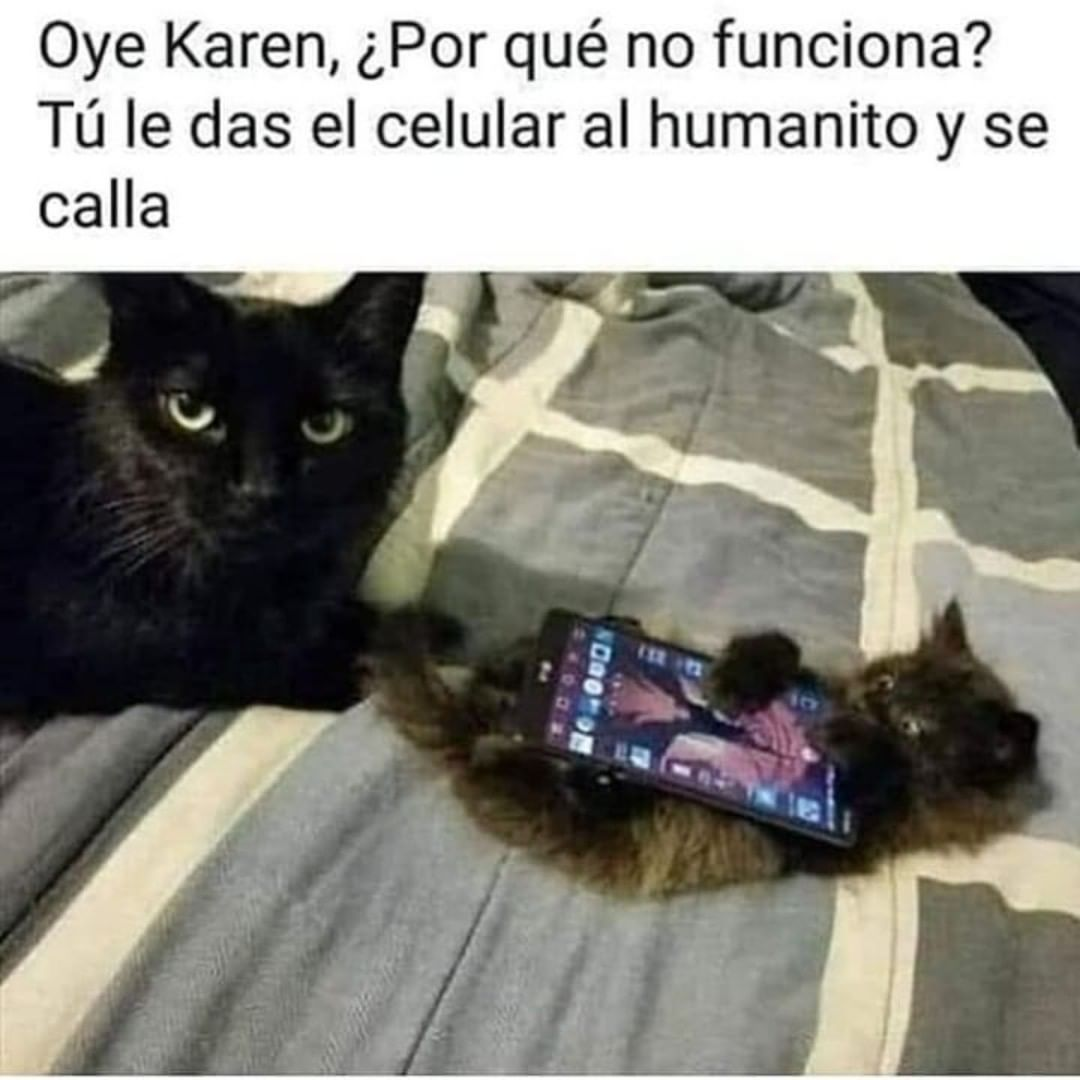 Oye Karen, ¿Por qué no funciona? Tú le das el celular al humanito y se calla.