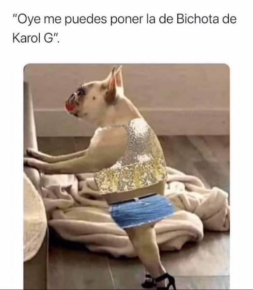 Oye me puedes poner la de Bichota de Karol G?