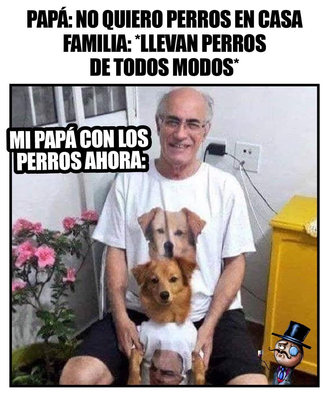 Papá: No quiero perros en casa.  Familia: Llevan perros de todos modos.  Mi papá con los perros ahora:
