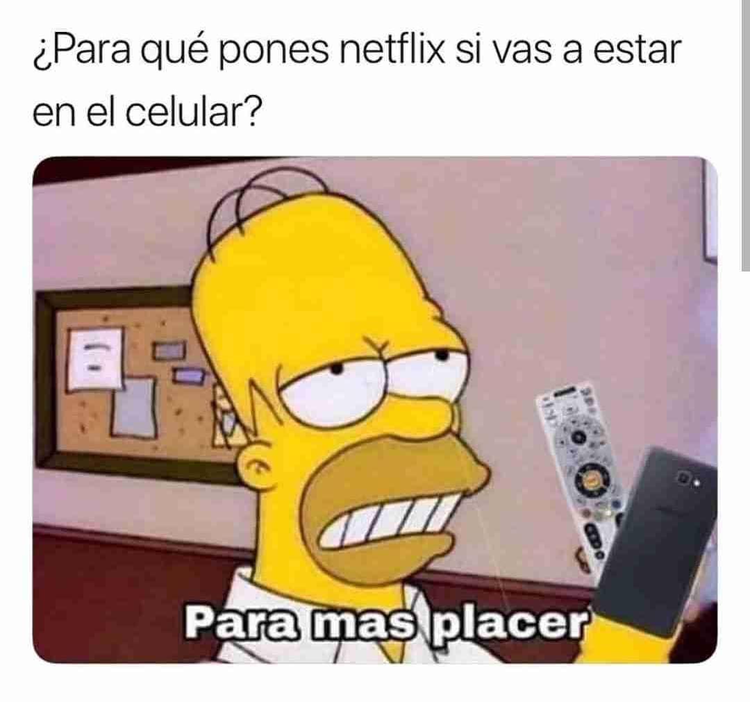 ¿Para qué pones Netflix si vas a estar en el celular?  Para más placer.