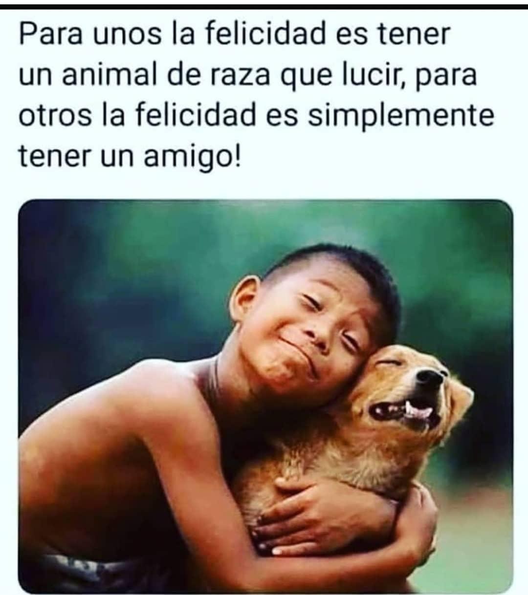 Para unos la felicidad es tener un animal de raza que lucir, para otros la felicidad es simplemente tener un amigo!