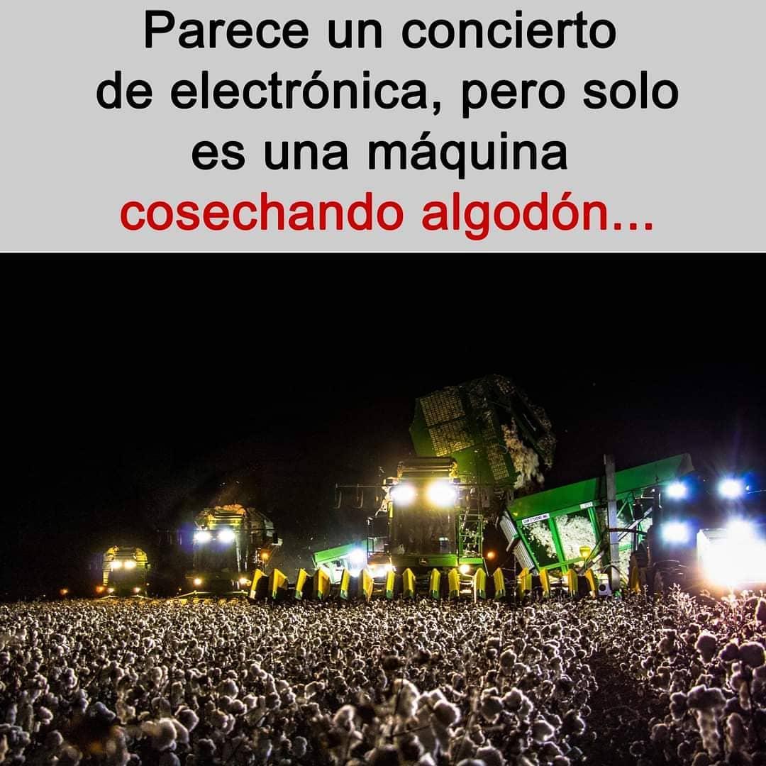 Parece un concierto de electrónica, pero solo es una máquina cosechando algodón...