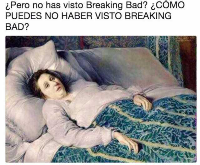 ¿Pero no has visto Breaking Bad?  ¿Cómo puedes no haber visto Breaking Bad?