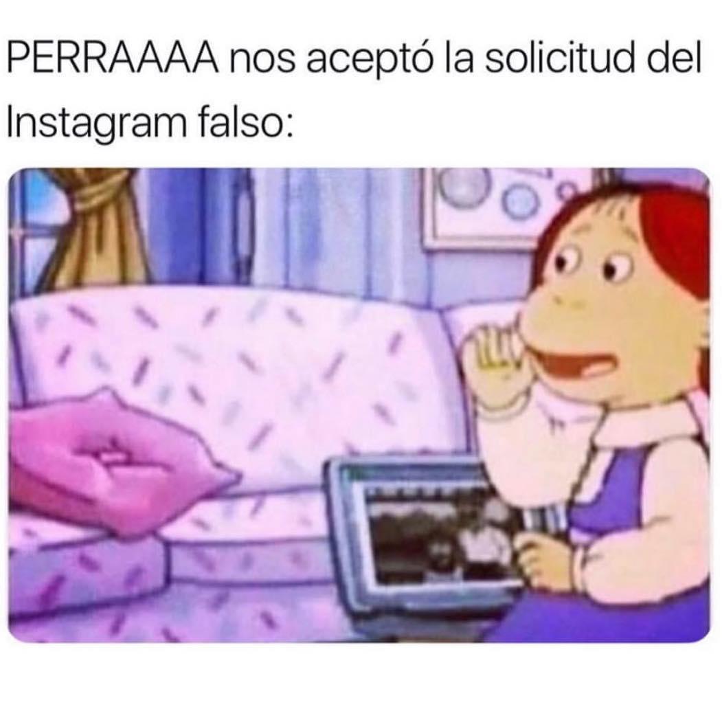 Perraaaa nos aceptó la solicitud del Instagram falso: