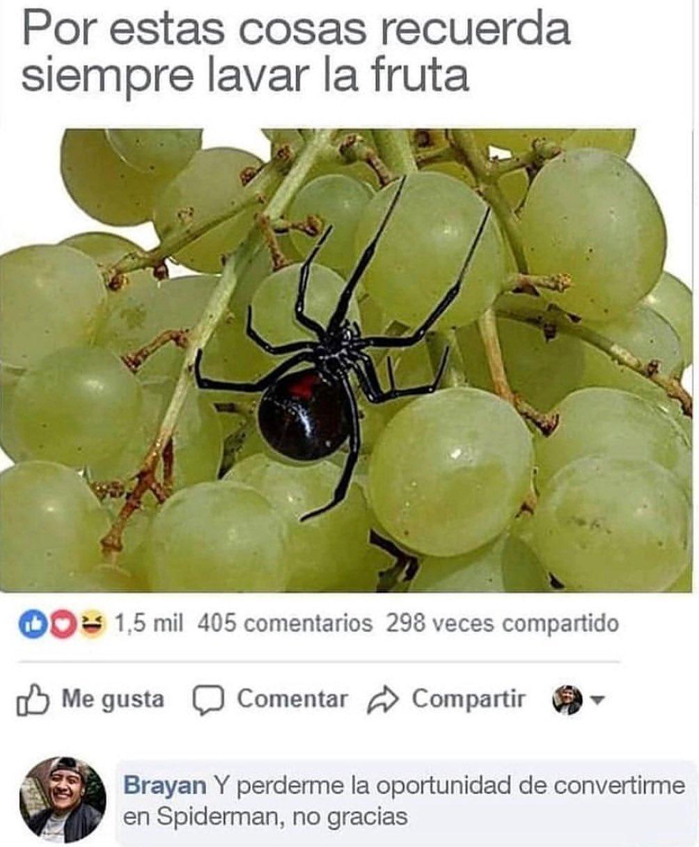 Por estas cosas recuerda siempre lavar la fruta.  Brayan: Y perderme la oportunidad de convertirme en Spiderman, no gracias.