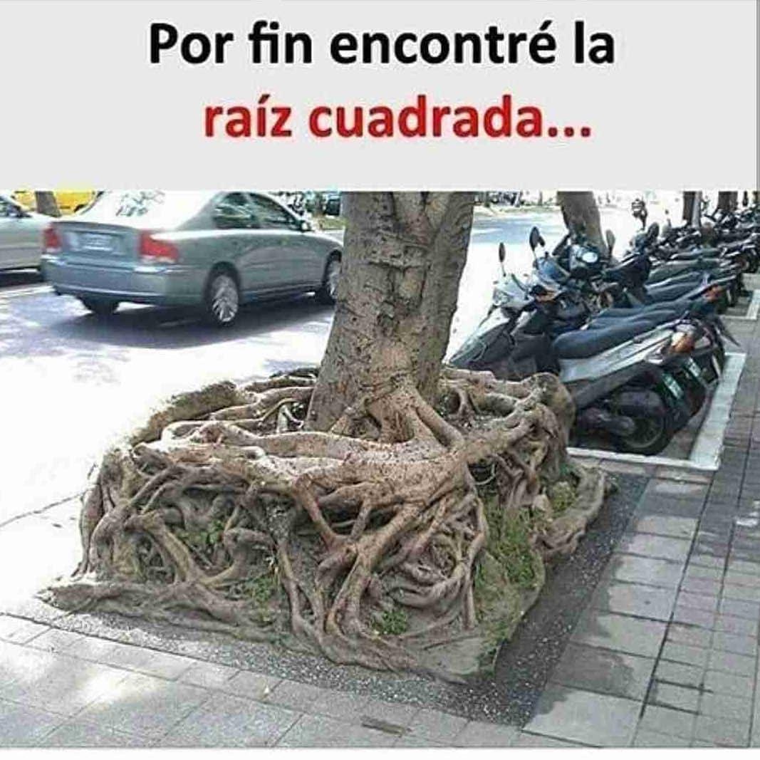 Por fin encontré la raíz cuadrada...