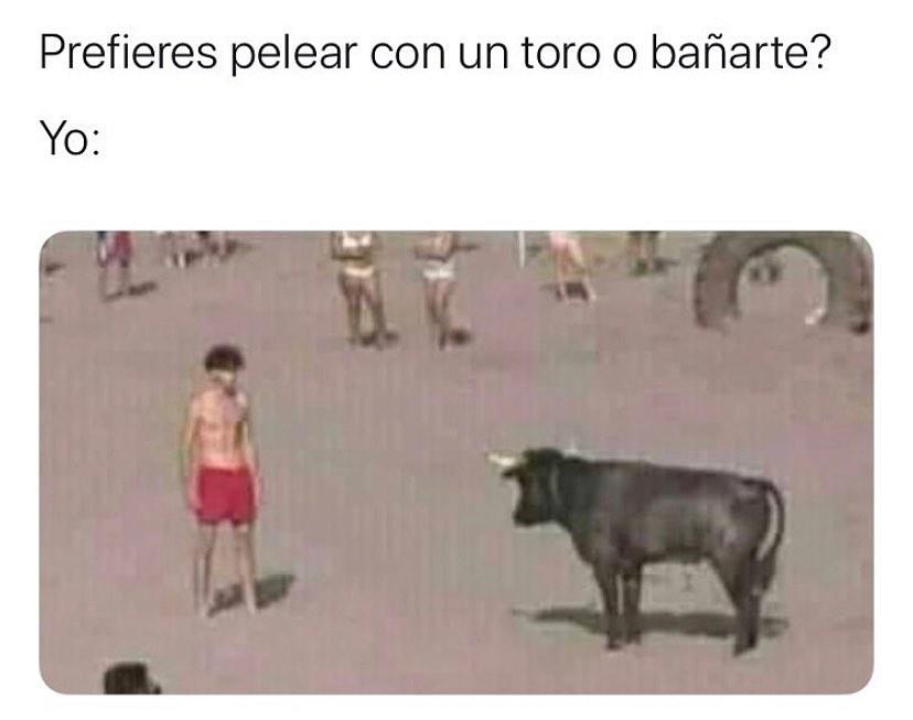 """""""Prefieres pelear con un toro o bañarte?""""  Yo:"""