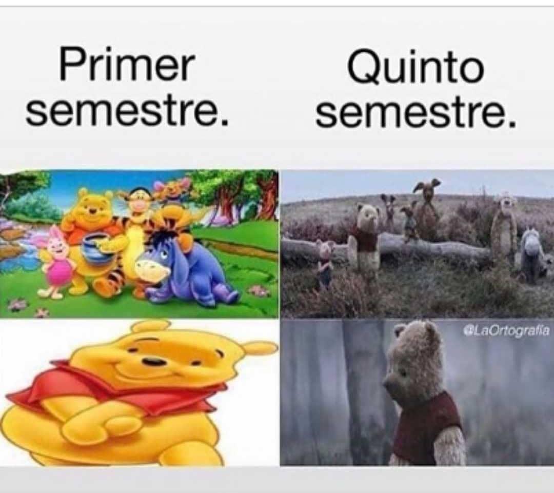Primer semestre. / Quinto semestre.