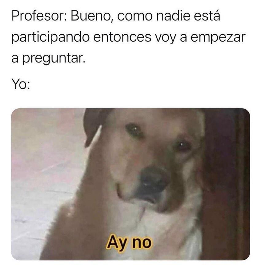 Profesor: Bueno, como nadie está participando entonces voy a empezar a preguntar.  Yo: Ay no.