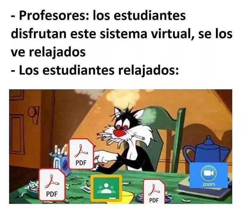 Profesores: Los estudiantes disfrutan este sistema virtual, se los ve relajados.  Los estudiantes relajados: