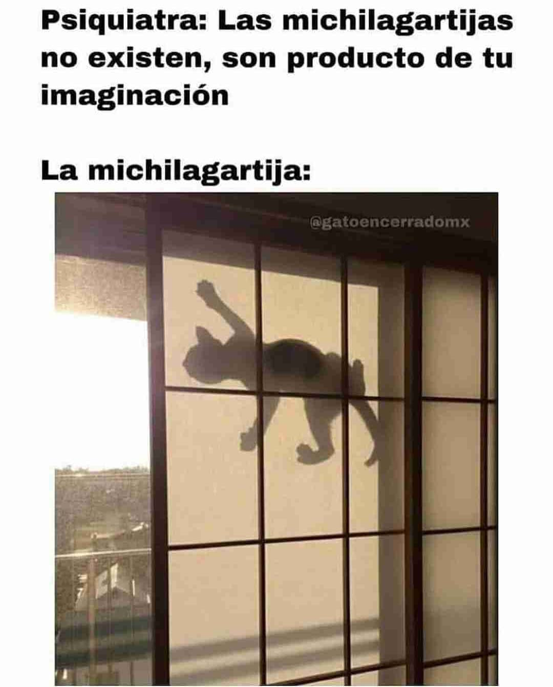 Psiquiatra: Las michilagartijas no existen, son producto de tu imaginación.  La michilagartija: