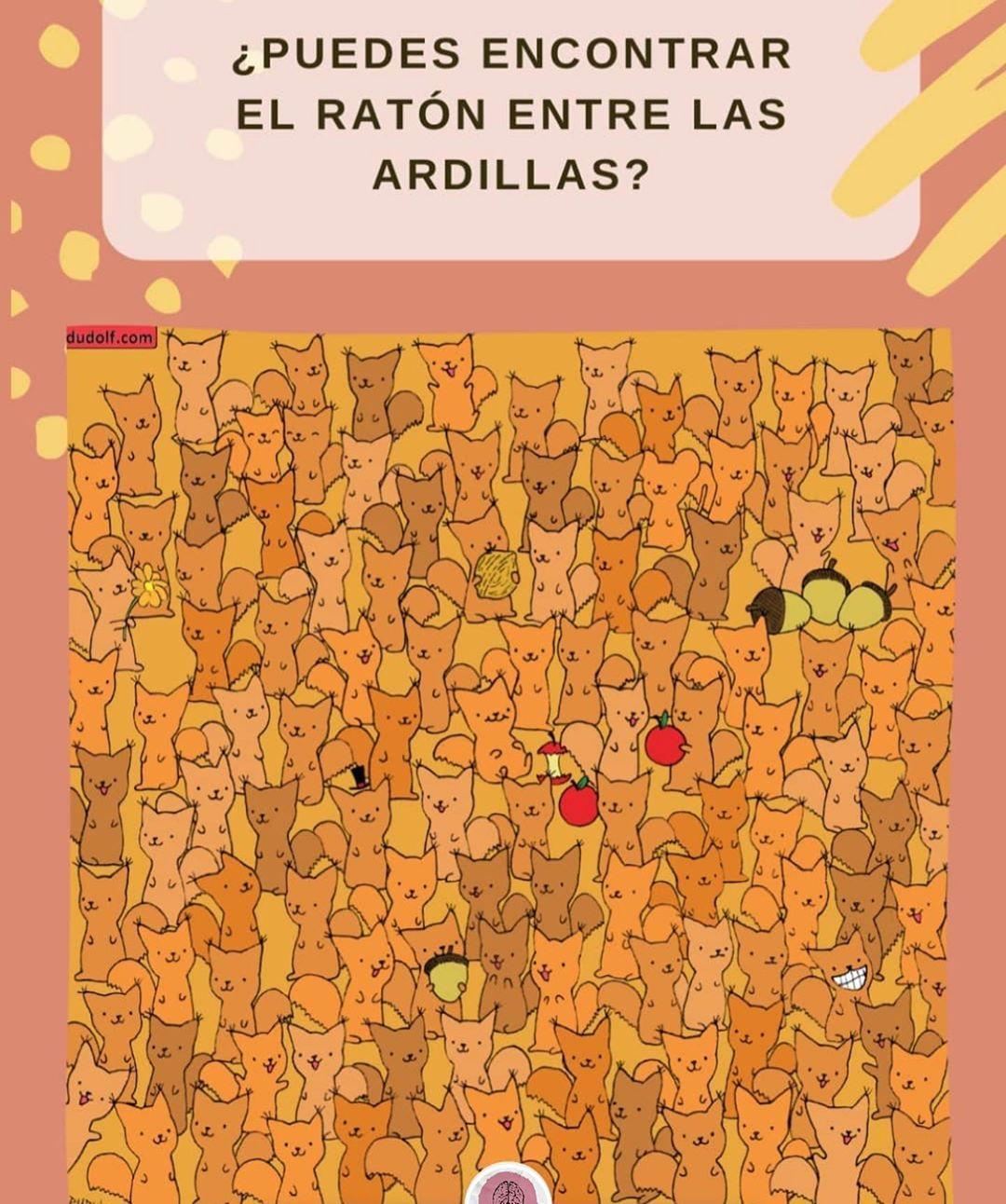 ¿Puedes encontrar el ratón entre las ardillas?