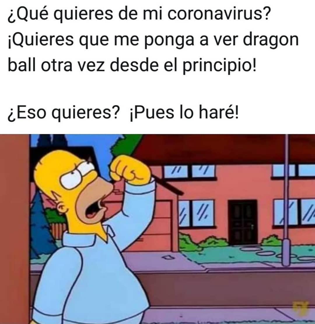 ¿Qué quieres de mi coronavirus? ¡Quieres que me ponga a ver dragon ball otra vez desde el principio! ¿Eso quieres? ¡Pues lo haré!