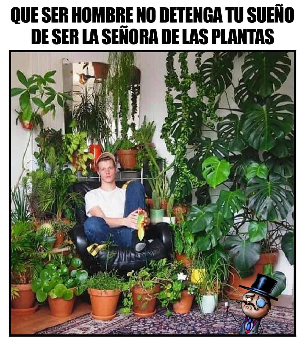 Que ser hombre no te detenga tu sueño de ser la señora de las plantas.
