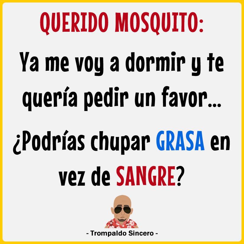 Querido mosquito: Ya me voy a dormir y te quería pedir un favor... ¿Podrías chupar grasa en vez de sangre?