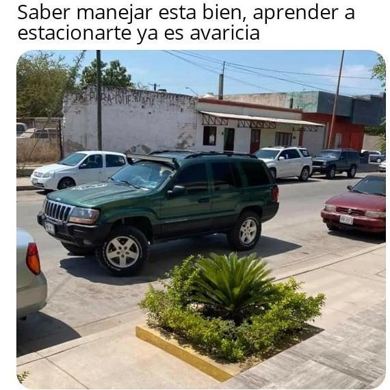 Saber manejar está bien, aprender a estacionarte ya es avaricia.