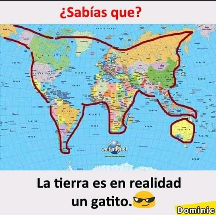 ¿Sabías que? La tierra es en realidad un gatito