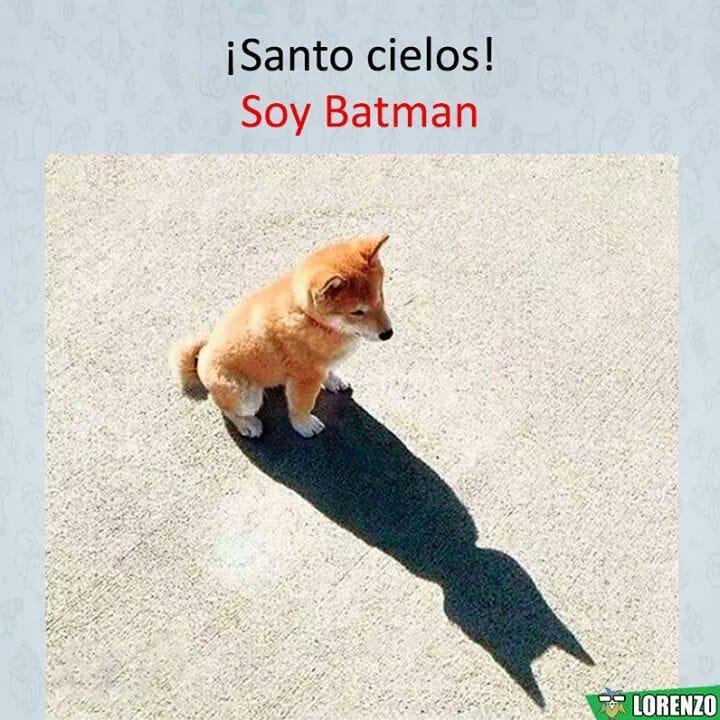 ¡Santo cielos!  Soy Batman