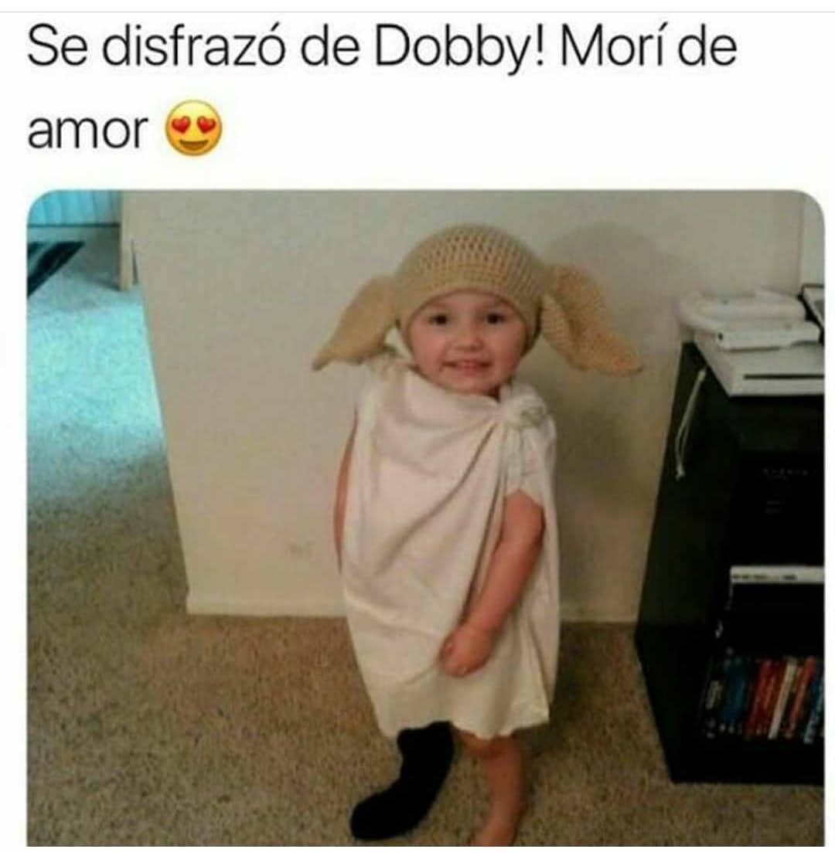 Se disfrazó de Dobby! Morí de amor.