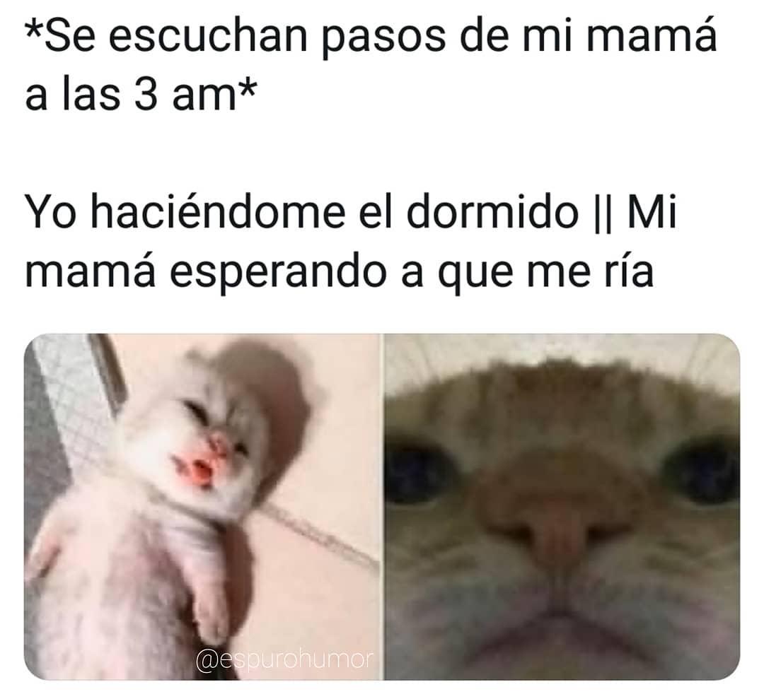 *Se escuchan pasos de mi mamá a las 3 am*  Yo haciéndome el dormido. // Mi mamá esperando a que me ría.