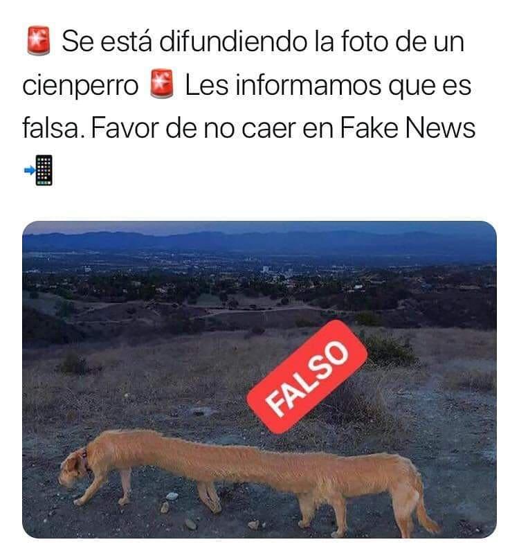 Se está difundiendo la foto de un cienperro. Les informamos que es falsa. Favor de no caer en Fake News.