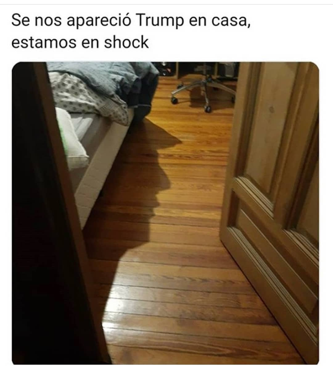 Se nos apareció Trump en casa, estamos en shock.