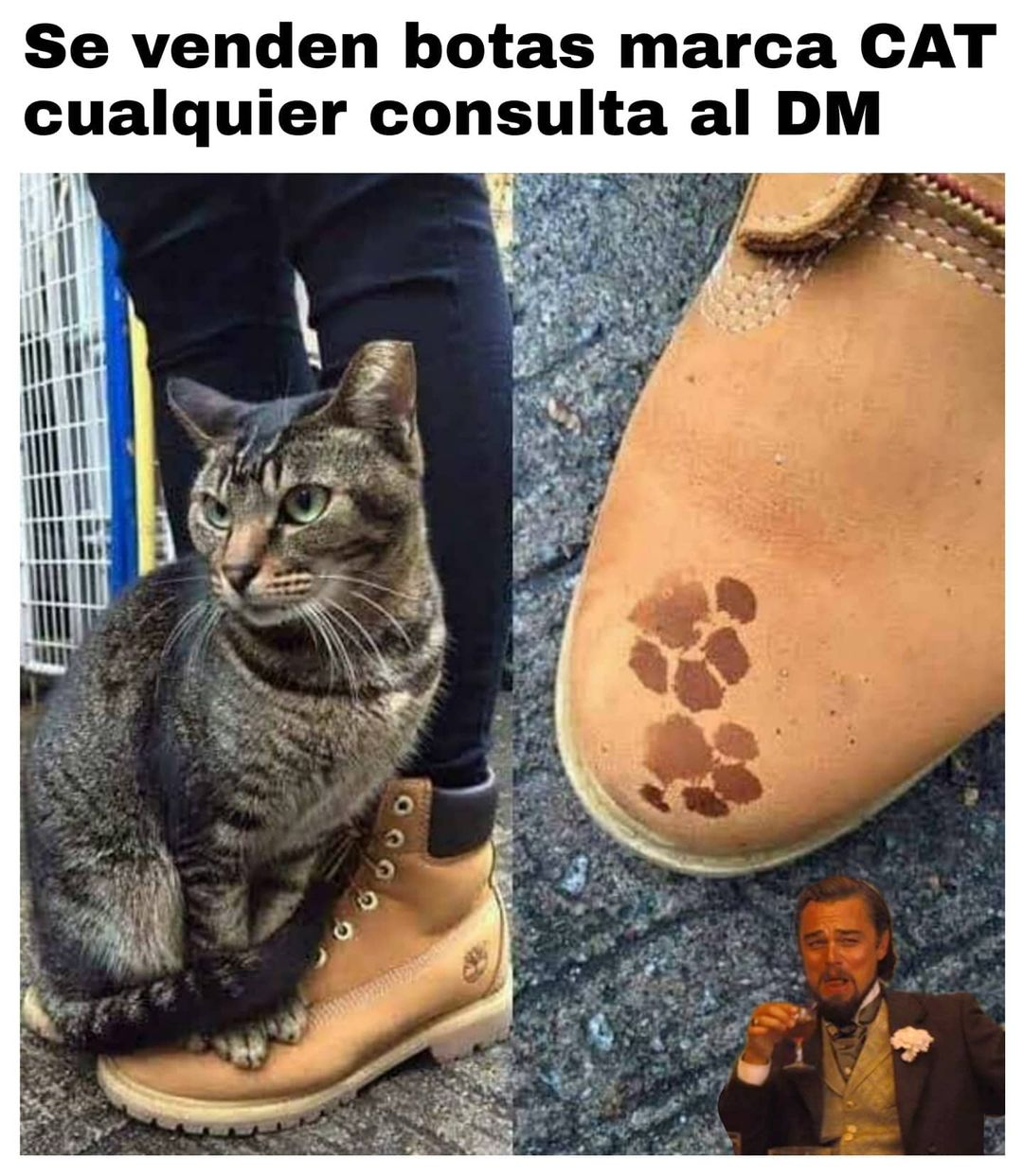 Se venden botas marca CAT cualquier consulta al DM.