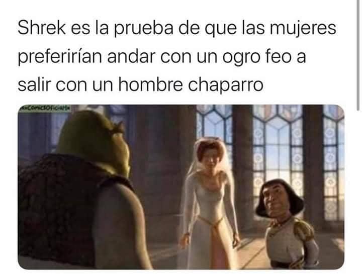 Shrek es la prueba de que las mujeres preferirían andar con un ogro feo a salir con un hombre chaparro.
