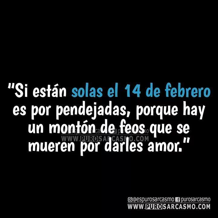 Si están solas el 14 de febrero es por pendejadas, porque hay un montón de feos que se mueren por darles amor.