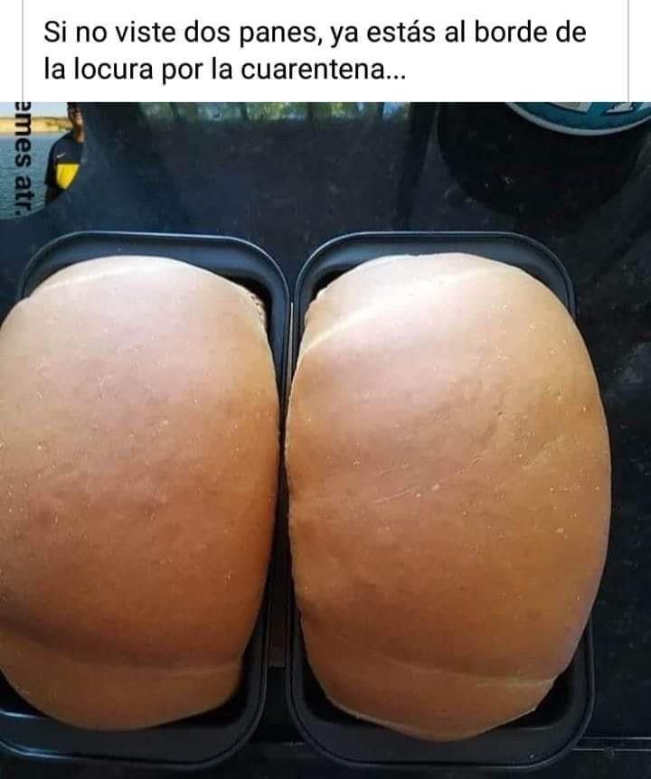 Si no viste dos panes, ya estás al borde de la locura por la cuarentena...