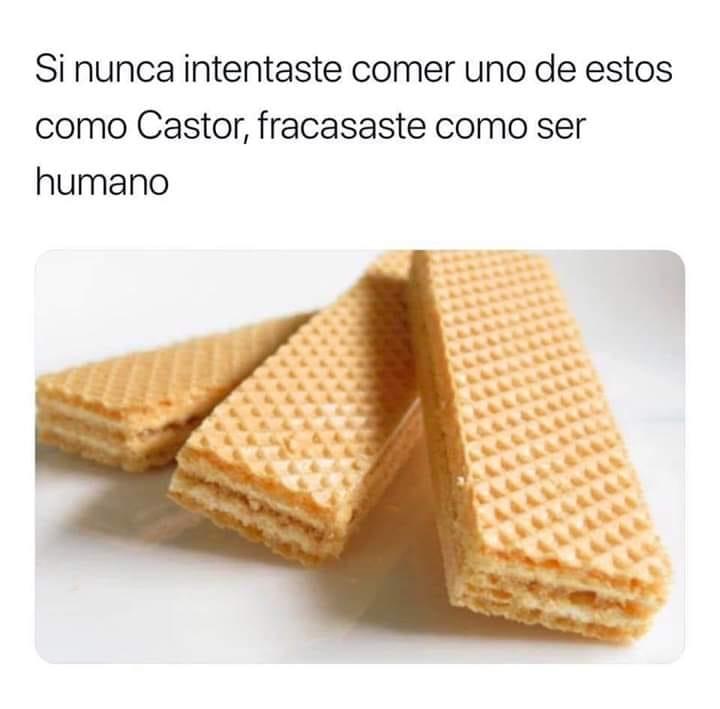 Si nunca intentaste comer uno de estos como Castor, fracasaste como ser humano.