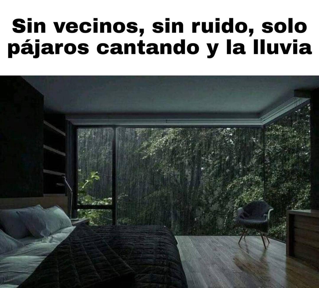 Sin vecinos, sin ruido, solo pájaros cantando y la lluvia.