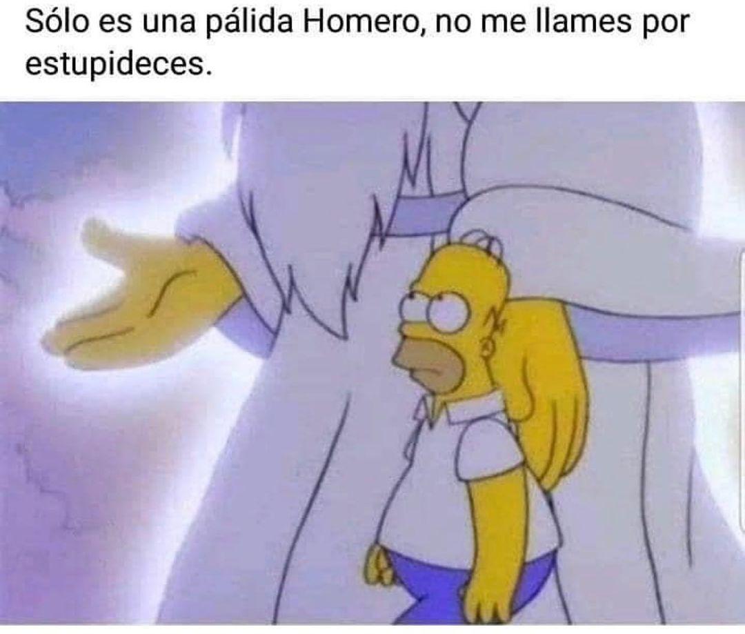 Sólo es una pálida Homero, no me llames por estupideces.