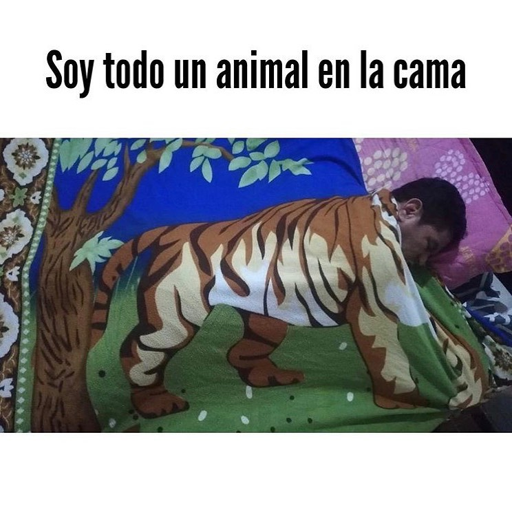 Soy todo un animal en la cama.