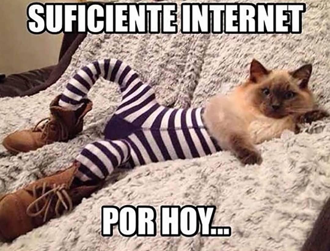 Suficiente internet por hoy...