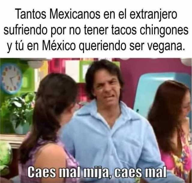 Tantos mexicanos en el extranjero sufriendo por no tener tacos chingones y tú en México queriendo ser vegana.  Caes mal mija, caes mal.